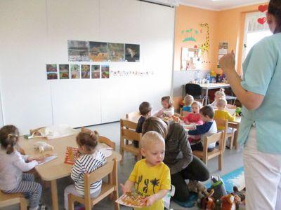 Galeria Edukacja leśna